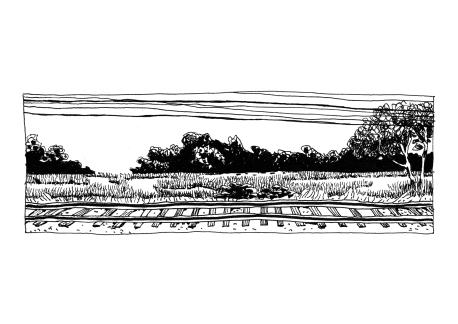 paysage c