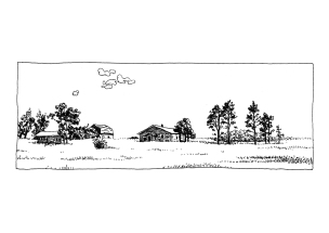 paysage e